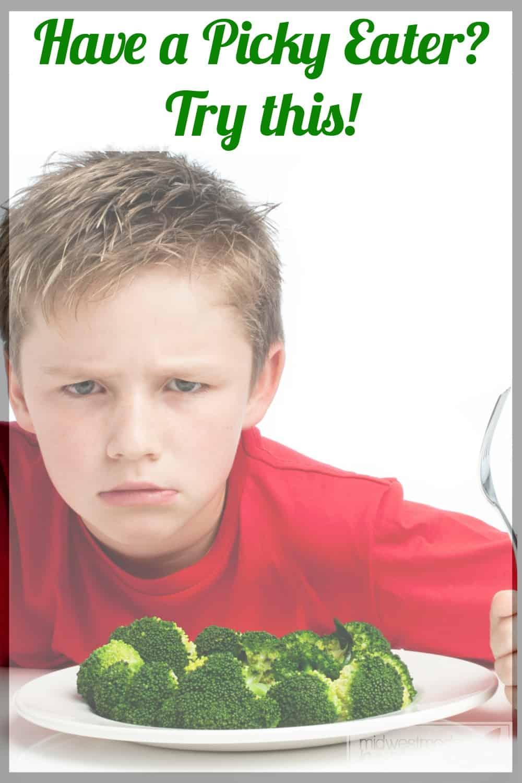 Raising Kids who aren't picky eaters